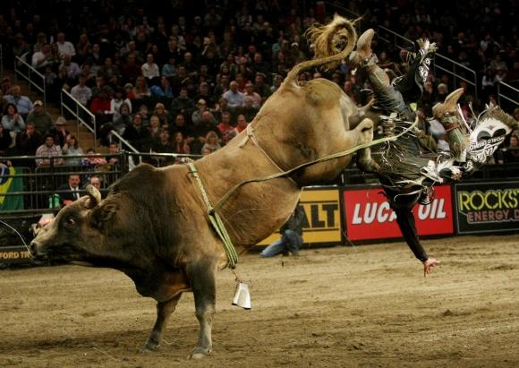 102 Best Bull Riders Images On Pinterest Rodeo Cowboys Bull Riders And Rodeo