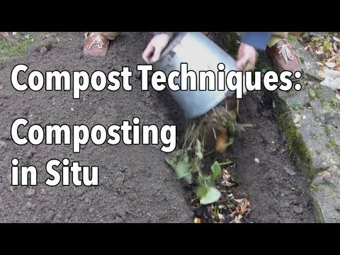 We all know that composting is essential in the garden, but compost piles can soon overflow at this time of year when you're cutting back perennials and pull...