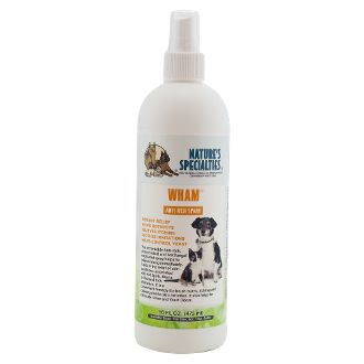 Best Remedy For Hotspots On Dogs