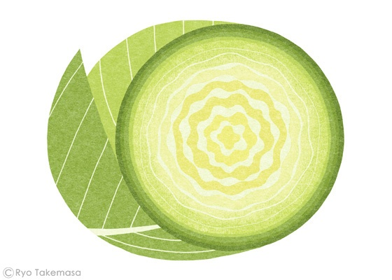 Ryo Takemasa -- cabbage