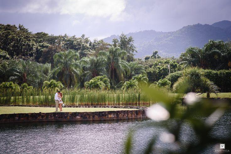 M s de 25 ideas incre bles sobre el jardin botanico en for Actividades jardin botanico caguas