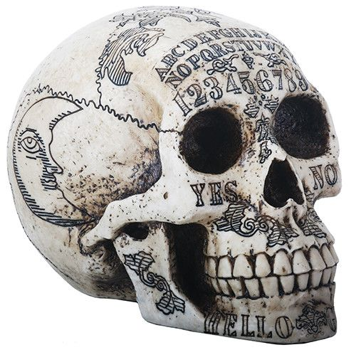 """A highly detailed skull with spiritualistic Ouija markings - ideal for a conversation and altar piece. L: 8.5"""" x W: 5.75"""" x H: 6.25"""""""