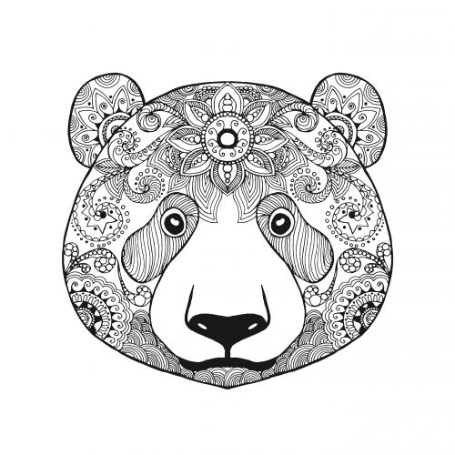 advanced bear coloring page