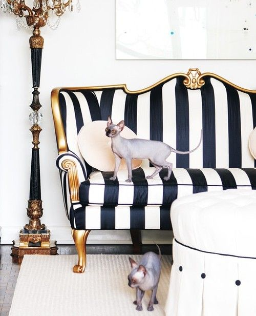 Black & white stripe couch with gilt.. Oh and cute puppy #InteriorDecorInspiration #Couches
