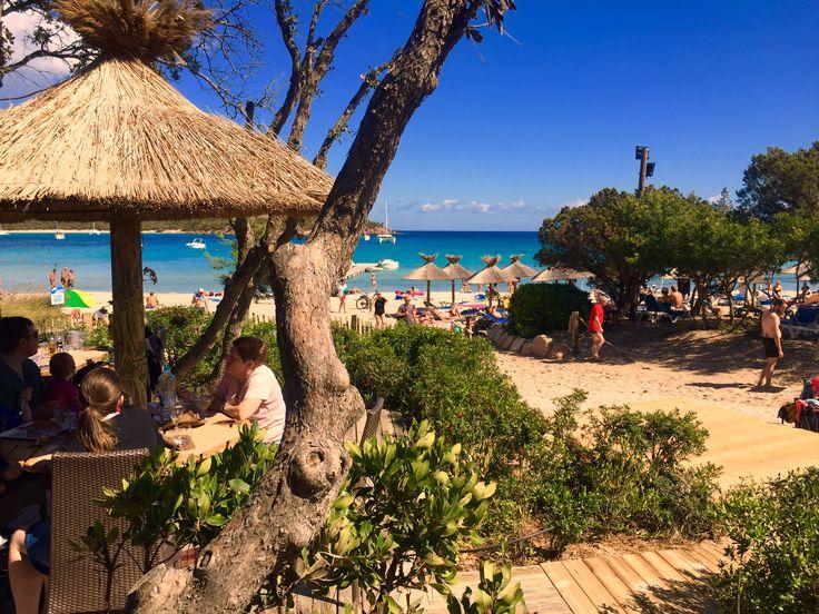 Korsika Strand Rondinara