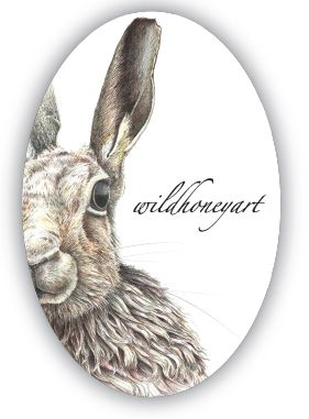 The iconic Moon Hare, face of Wild Honey Art.