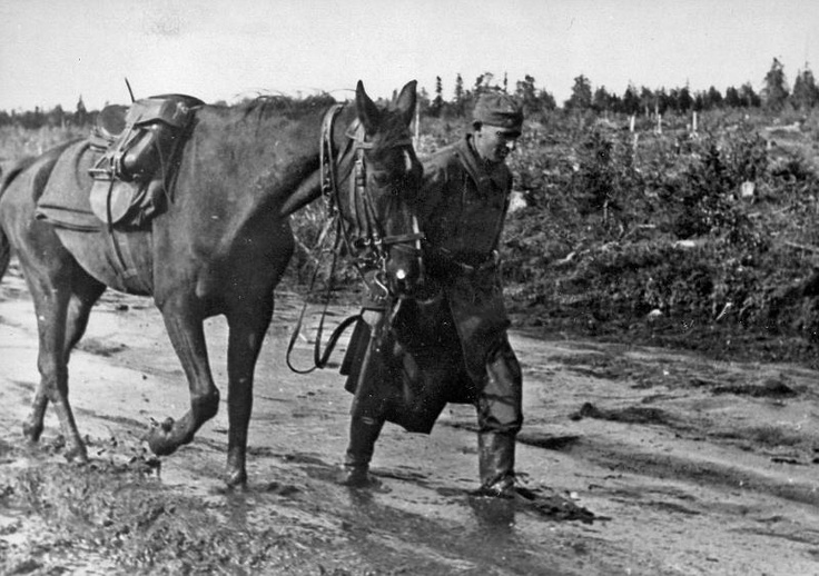 German  soldier and his horse in a muddy road of Karelia.Russia WW II