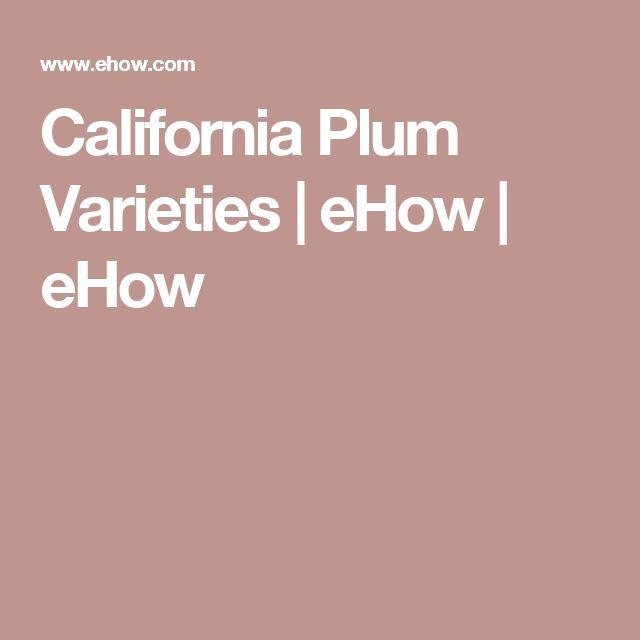 California Plum Varieties   eHow   eHow