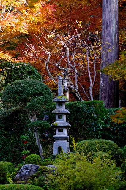 Kyoto, Japan I always wanted one of these garden spots in my yard