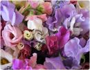 Sweet Peas and White Rose