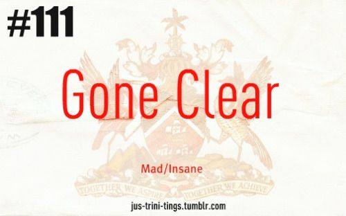 Don't know trini slang? You gon learn today
