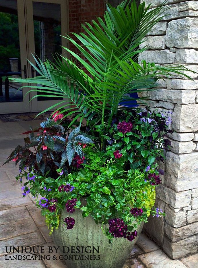 293 best CONTAINER GARDENING UNIQUE BY DESIGN images on Pinterest