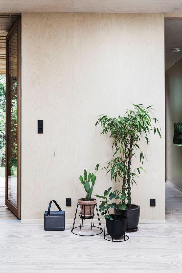 Frodig innendørs med grønne planter