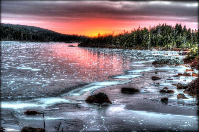 Frozen Pond, Alert Bay, B.C. by Tom Eagan