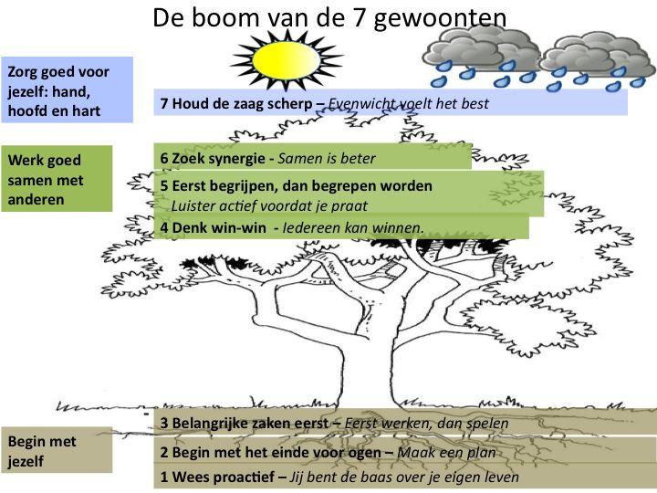 De 7 eigenschappen van effectief leiderschap gegoten in de metafoor van een boom. Het blijft inspirerend!