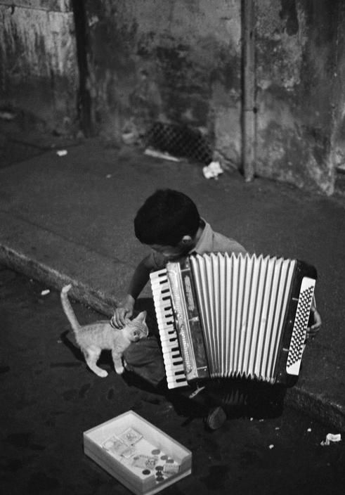 Chico tocando el Acordeón. Roma-Italia 1956.