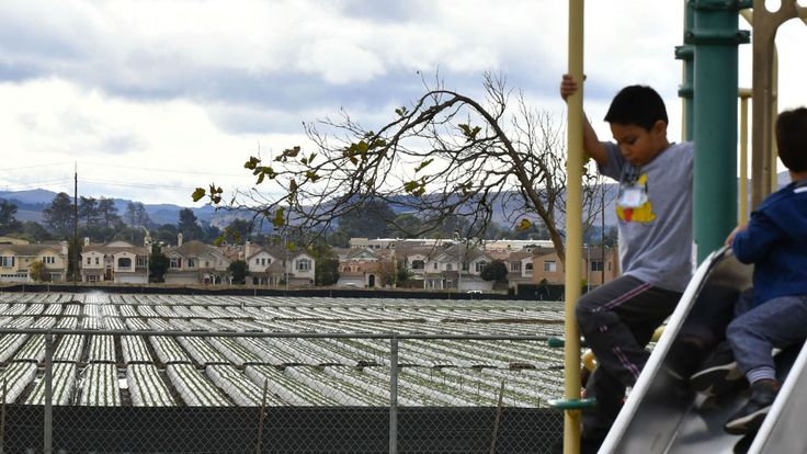 From pesticide use to 'lunch shaming,' new California laws will affect education in 2018 #college