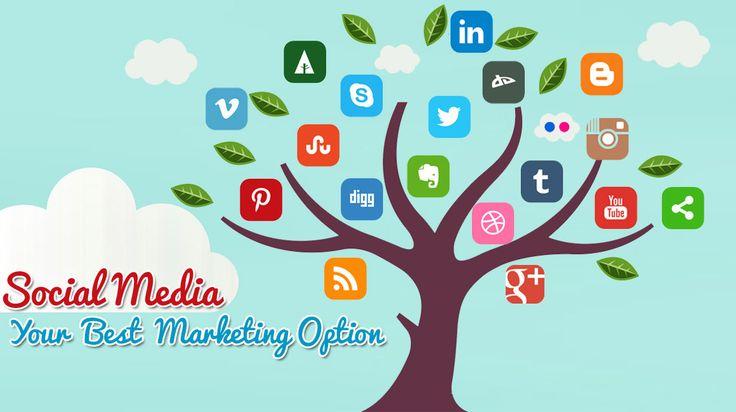 Social Media Manager!