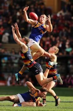 Shannon Hurn of the Eagles takes a mark during the round 19 AFL match between the Adelaide Crows and the West Coast Eagles at Adelaide Oval ...