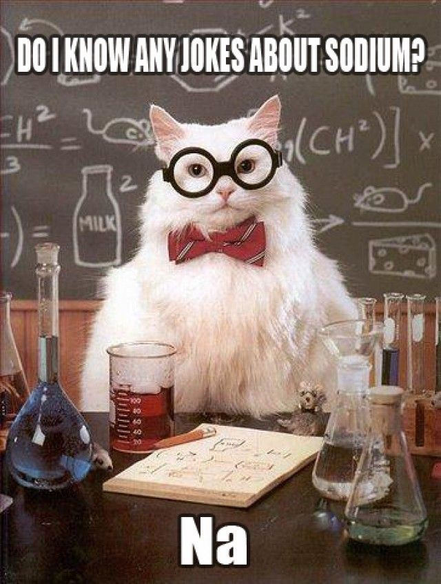 Cats + chemistry humor = perfect for you.