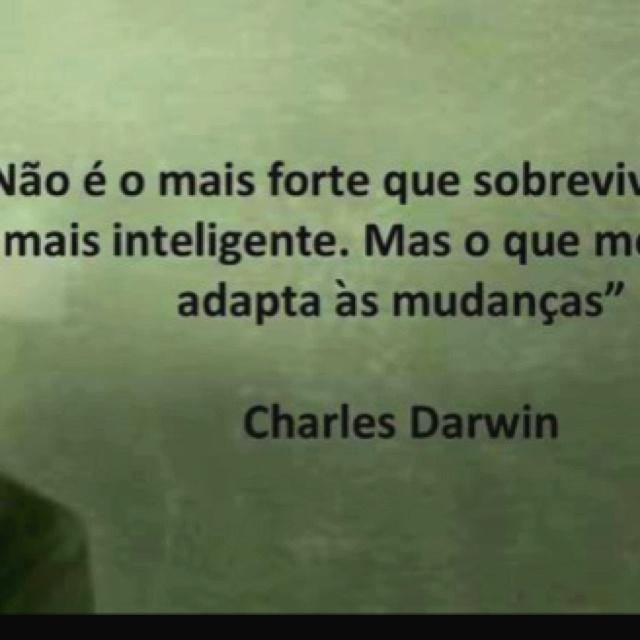 """""""Não é o mais forte que sobrevive, nem o mais inteligente. Mas o que melhor se adapta às mudanças."""" - Charles Darwin"""