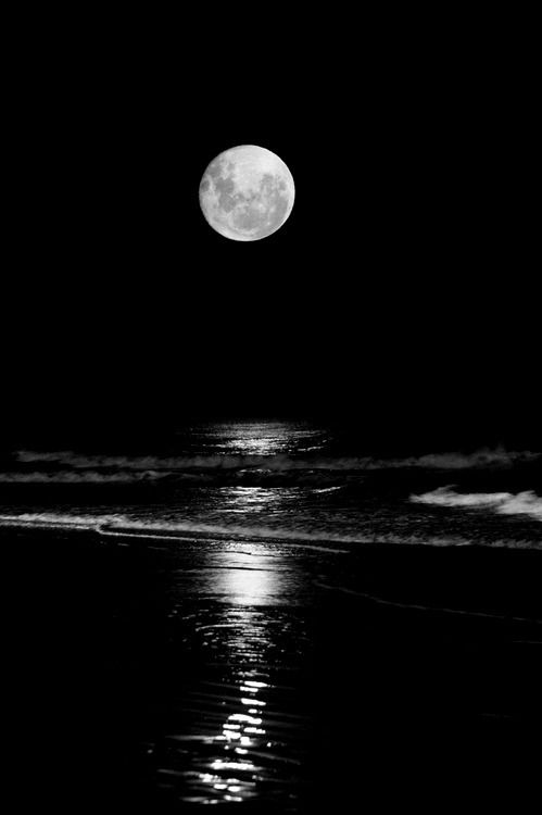 5fe7978819da Pin by Dot Taylor on Moon