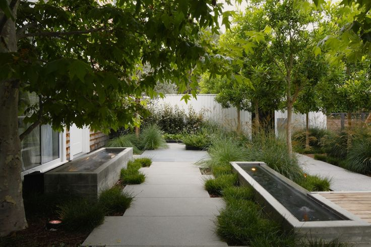 twin concrete water features, lines of hardscape softened by grasses, ornamental trees, design by Mark Tessier Landscape Architecture
