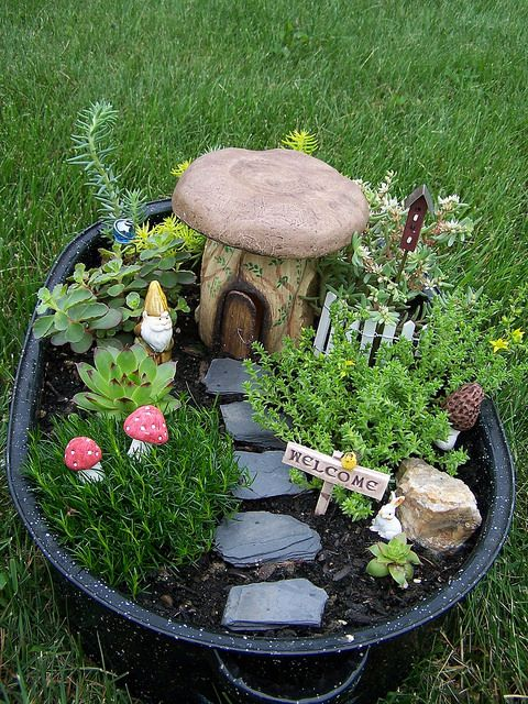 Fairy garden pots! Always always mean to do this.