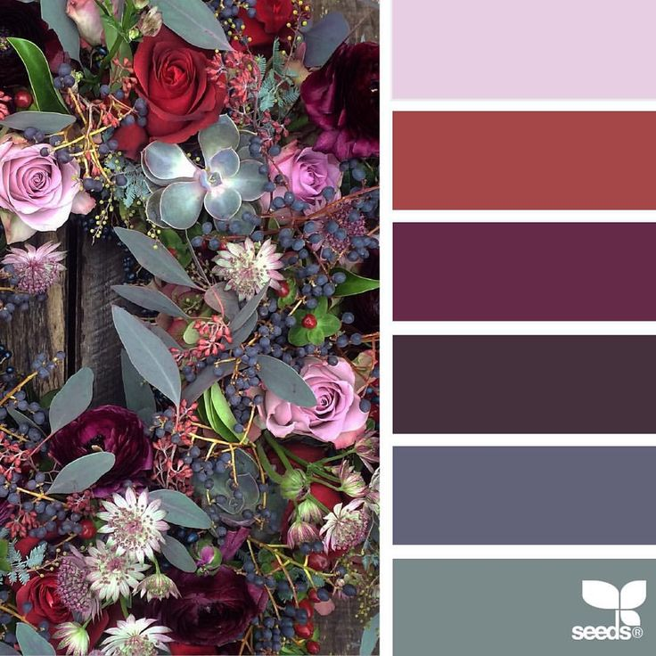 today's inspiration image for { flora palette } is by @fairynuffflower ... thank you, Steph, for another beautiful #SeedsColor photo share!