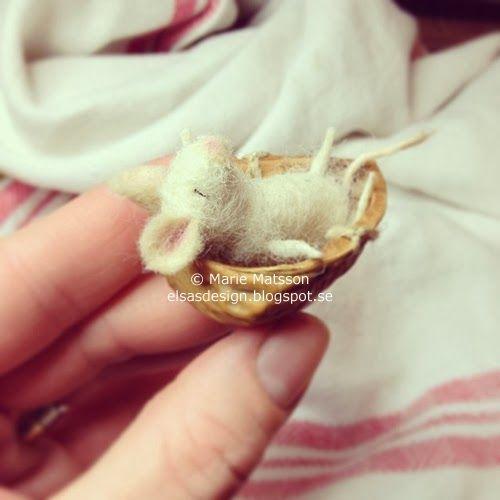 Pytteliten mus sover sött i ett litet valnötsskal. / Tiny mouse asleep in a small walnut shell.