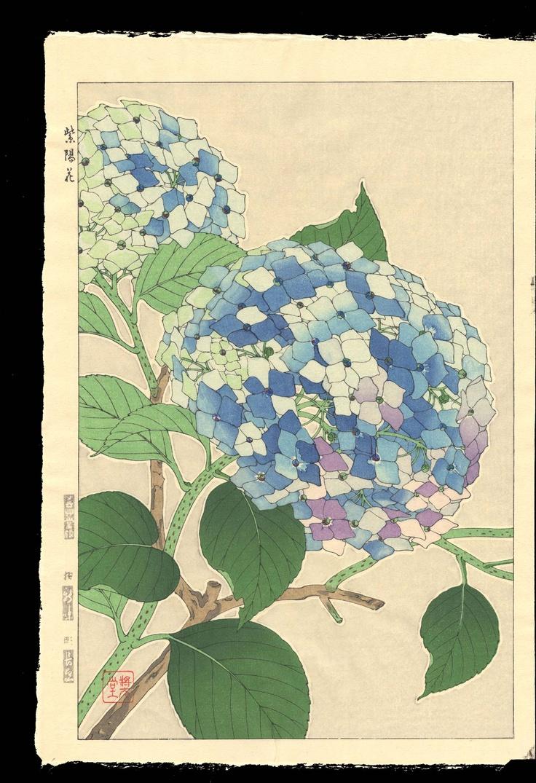 "Hydrangea woodblock ""Scene No. 8"" by Shodo Kawarazaki (1889 - 1973)"
