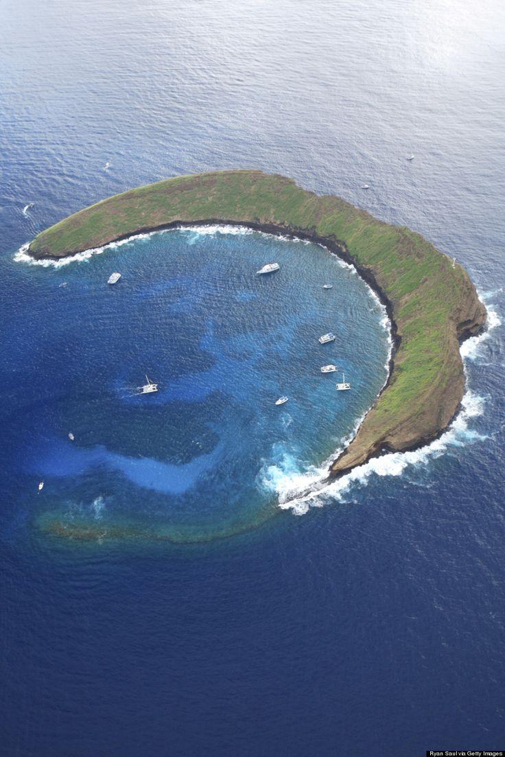molokini… ハワイ・モロキニ島は、夢が叶う島 シュノーケリングを楽しもう(画像など)
