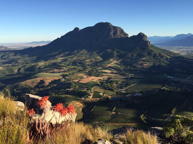 View overlooking Clouds Estate taken by Alfred Egger. #Stellenbosch #Cloudsestate http://cloudsestate.com/gallery.html
