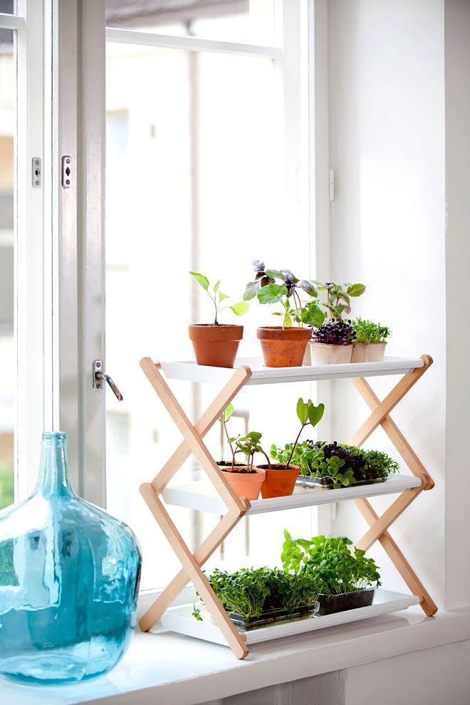 Indoor plants solutions - Nursery shelves - By Linda Bergroth & Klaus Aalto for Kekkilä - Via Miss Moss