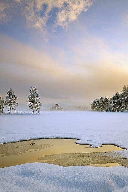 After the Light, Gold - Loch An Eilean, Cairngorm, Scotland by cedric_g, via Flickr