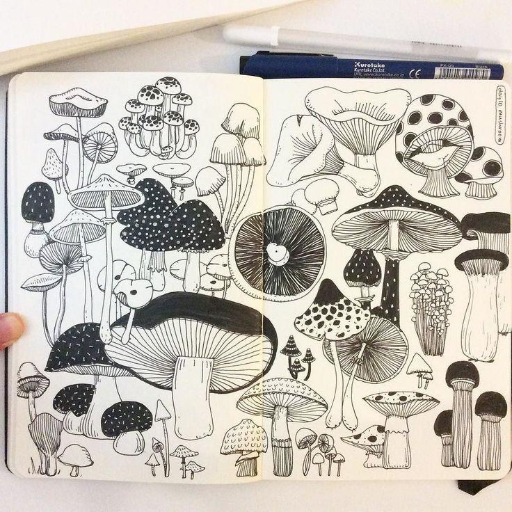 Mushroom drawings                                                                                                                                                                                 Mehr