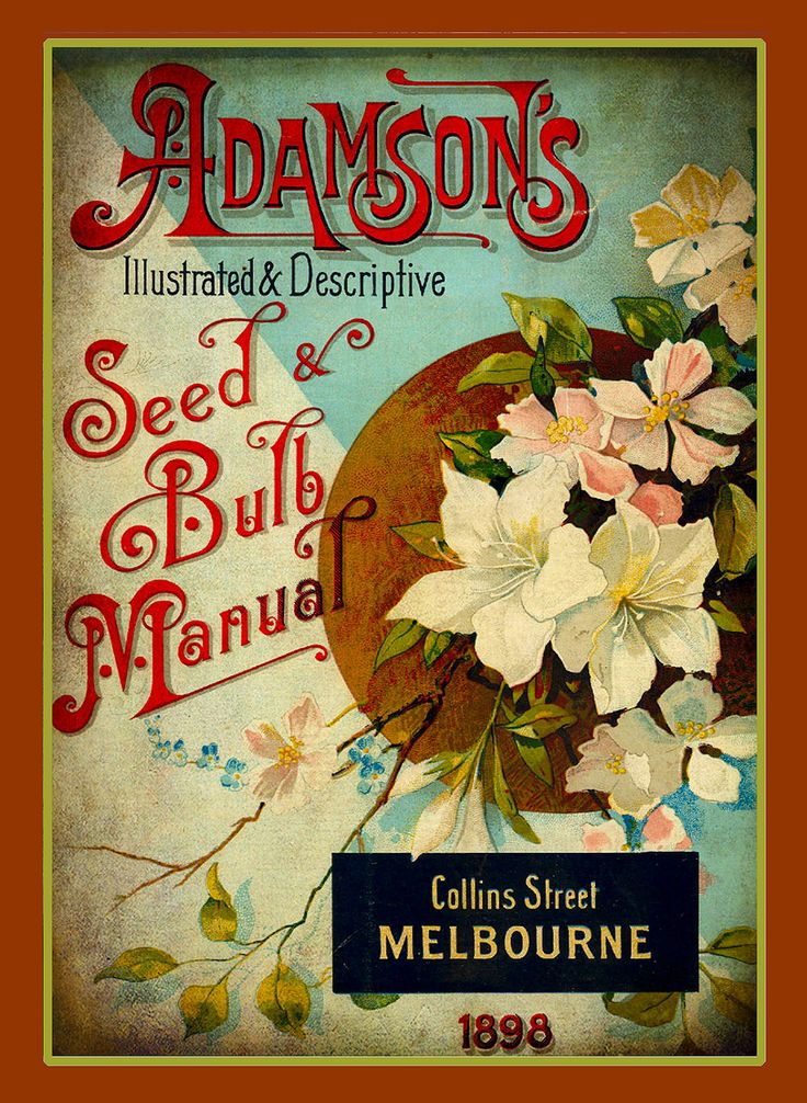 "Adamson's Vintage Seed & Bulb Manual 1898 Collins Street Melbourne ""Illustrated and Descriptive""."