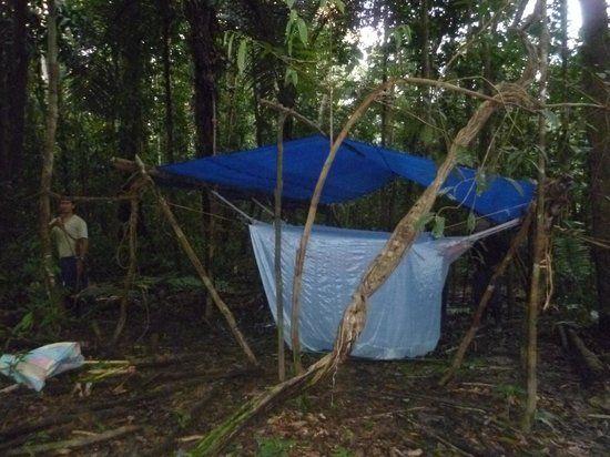 Bush camping in the high canopy jungle - Picture of Zacambu Natural ...