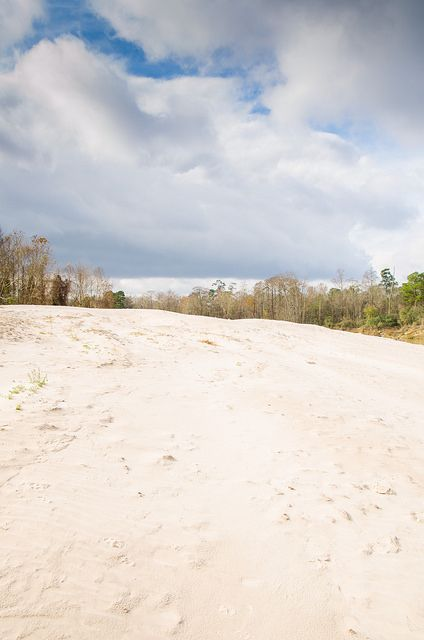 Large sand dunes line the banks of Spring Creek along the northern boundary of Jesse H Jones Park and Nature Center. Though the park has plenty more to offer, this view alone is worth a trip.