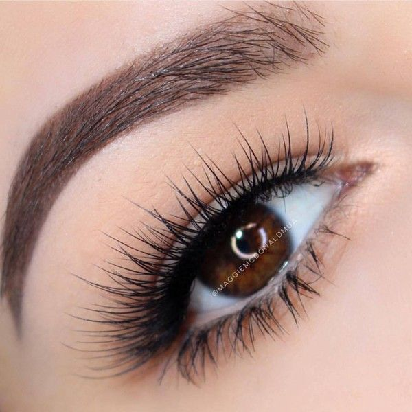 """Anastasia Beverly Hills on Instagram: """"Lashes and brows... ❤ liked on Polyvore featuring beauty products, makeup, eye makeup, eyes, eyebrow makeup, anastasia beverly hills, eyebrow cosmetics, eye brow makeup and anastasia beverly hills cosmetics"""