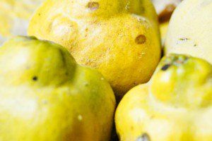 Quince Jelly Recipe | Chocolate & Zucchini