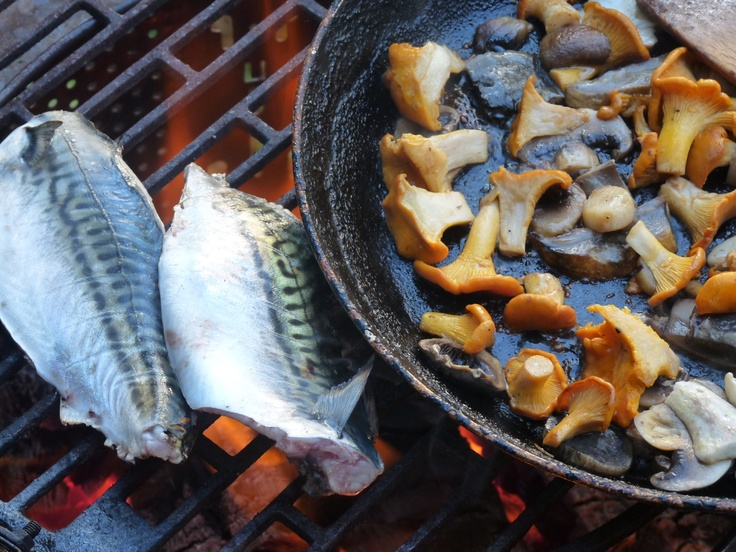 Fish from the loch and chanterelles from the forest for a delicious barbecue supper