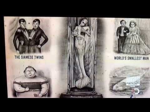 PT Barnum Mermaid. This is incredible Proof of mermaids in 1865!!! This is on a promotional poster for the circus. This mermaid depiction is spot on compared to what scientists found in South Africa.
