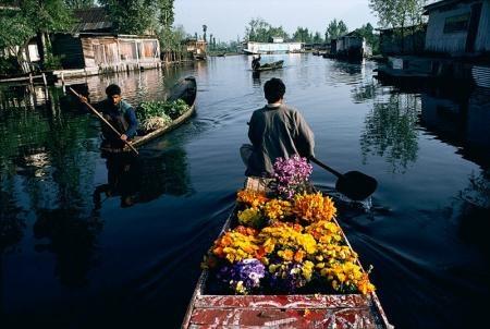 Flower Seller Dal Lake Kashmir
