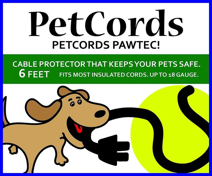 records MINI 6ft Dog and Cat Cord Protector-Protects Your Pets From Chewing Thr #PetCords
