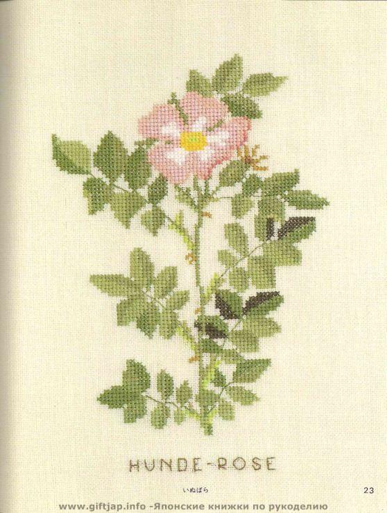 Gallery.ru / Фото #14 - Wild Flowers in Cross-Stitch - Mosca