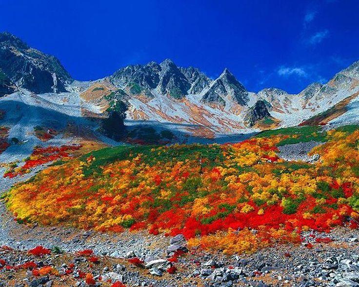 もうすぐやってくる紅葉の季節♪今回は9月下旬~11中旬に関東近郊で見れる紅葉おすすめスポットを紹介します!