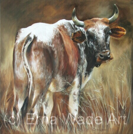 """Nguni 43.  Oil on Stretched Canvas.  450x450mm (18x18"""")  $160  SOLD"""