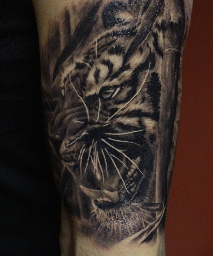 1000 images about my portfolio on pinterest for Cool tiger tattoos