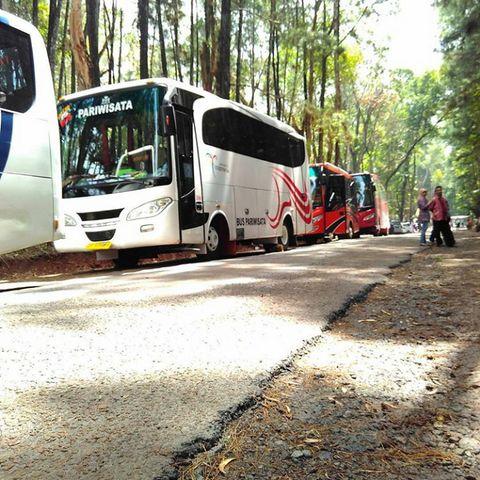 Sewa Bus Jogja   Blog Oke Berisi Tips, Informasi dan Review Terbaru